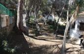 2-779/701, Land in Dehesa De Campoamor